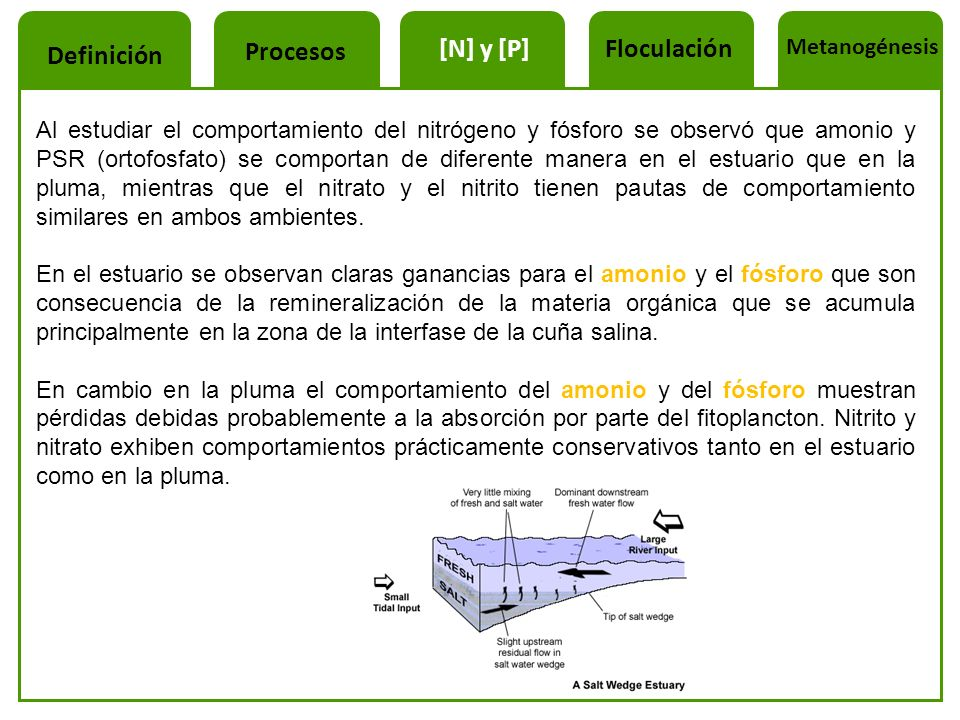 Procesos [N] y [P] Floculación Definición